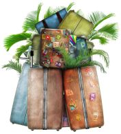 suitcases with palm trees